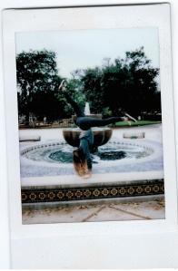 Polaroids-Ojai-04